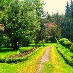 Dendropark, Armenia